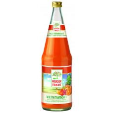 Werder Frucht Multivitamin Mehrfruchtsaft